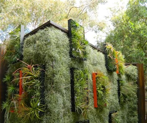 Vertical Garden Planting Panel Rooftop Airplant Vertical Garden Hides Solar Panels