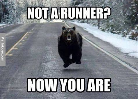 Runner Meme - not a runner meme jokes memes pictures