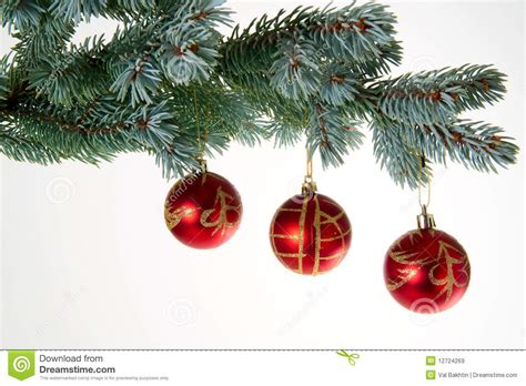tree baubles tree baubles royalty free stock images image