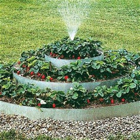 raised strawberry bed pyramidal strawberry bed with sprinkler i love to garden pinterest