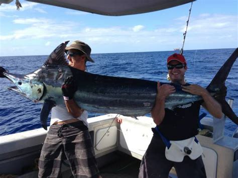 fishing boat hire exmouth exmouth boat hire exmouth boat hire