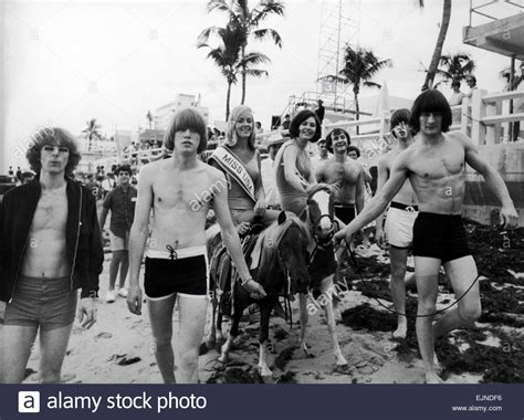 david crosby home free the byrds in miami florida with miss universe