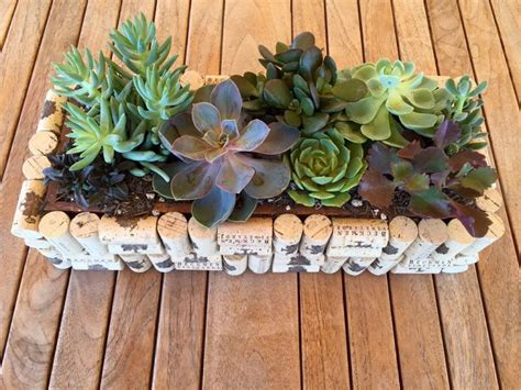 cork succulent planter 497 best cork creations images on wine corks