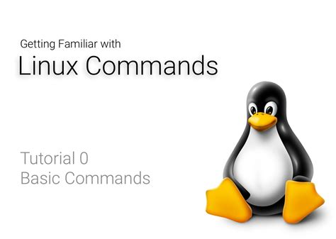 tutorial linux commands getting familiar with linux commands tutorial 0 basic