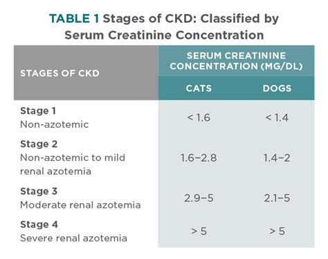 creatinine levels in dogs creatinine levels in cats blood cats