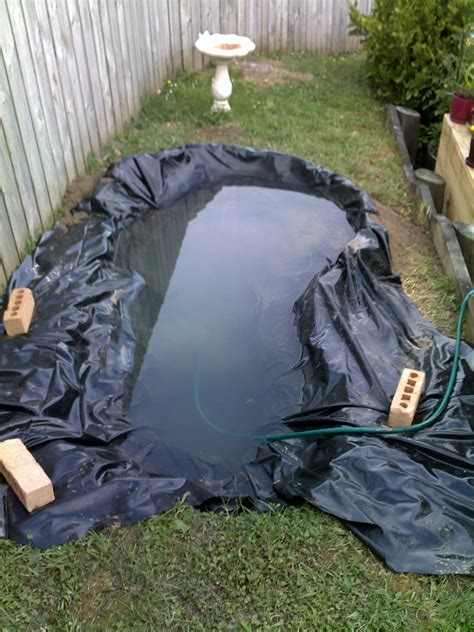Water Garden Supplies by Supplies For Water Gardens Basic Equipment For Backyard