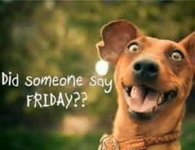 Tgif Meme Funny - happy friday jokes of the day 48661