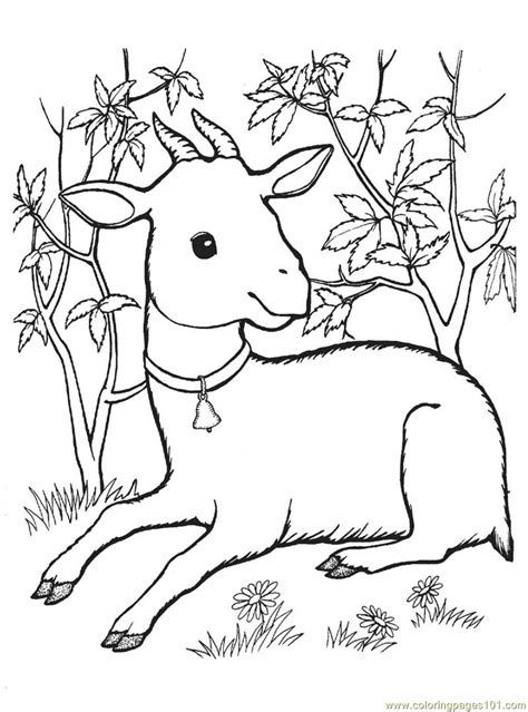 baby goats coloring pages free kid goat coloring pages