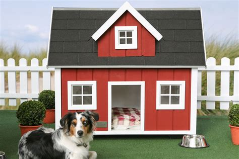 how big should a dog house be all the best home dog house designs 2011