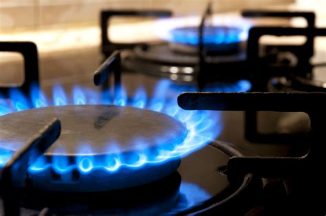Bild Gas by Easigas New Offering For Lpg Industry Infrastructure News