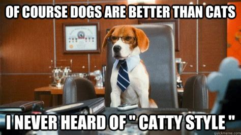 are dogs better than cats cats are better than dogs memes