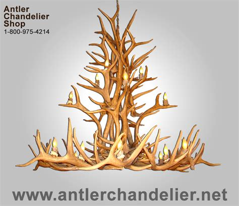 Real Antler Cascading Elk Mule Chandelier 20 Lights Antler Chandelier Shop