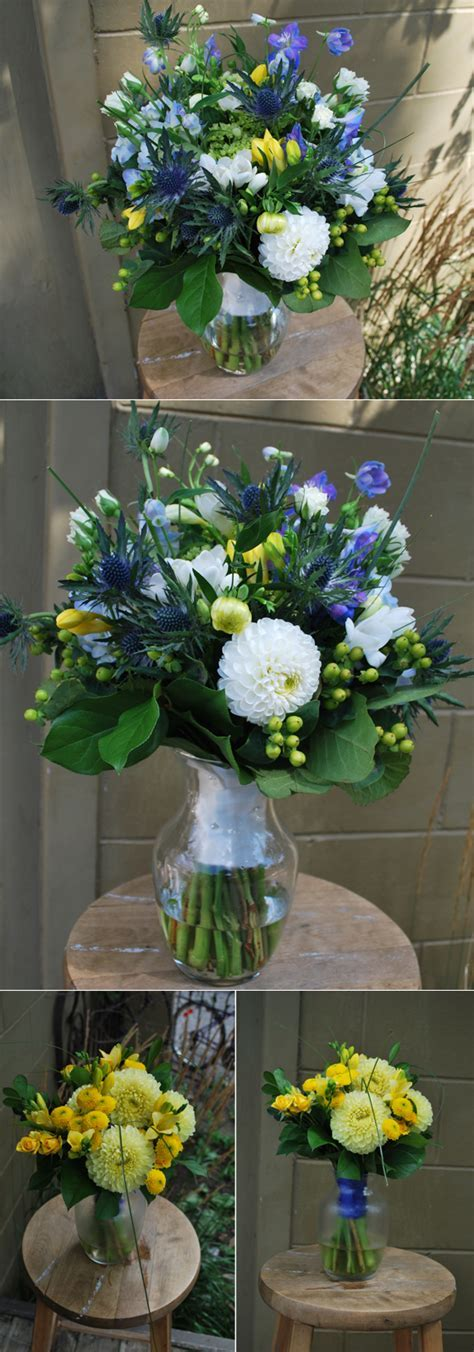 Blue, white and yellow  . sophisticated flower