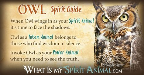 Owl Symbolism Meaning Spirit Totem Power Animal Owl Meanings