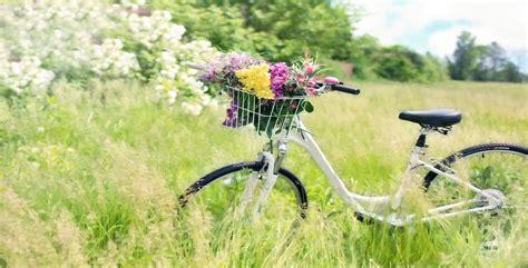 fiori da piantare in primavera fiori di primavera i 10 tipi che simboleggiano la stagione