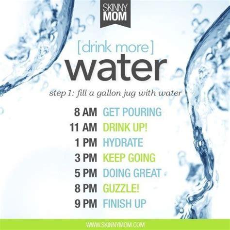 water challenge diet 1000 ideas about gallon water challenge on