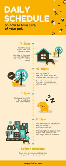 Infographic Templates Canva Canva Infographic Templates