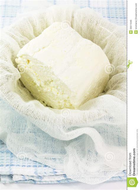 cottage cheese organic fresh organic handmade cottage cheese stock photo image