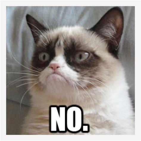 Grumpy Cat Meme No - no grumpy cat memes picsmine
