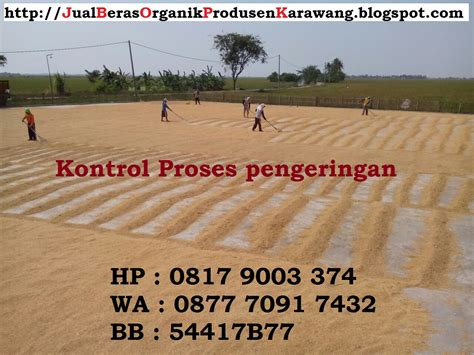 agen jual beras organik asli karawang harga distributor murah  produsen beras organik asli
