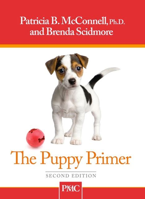 pup things that go pup to learn books the puppy primer book puppy book