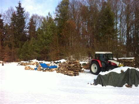 holz in der garage lagern brennholz kaminholz naturheizen de