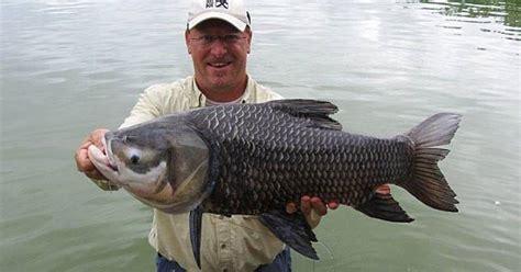 Pancingan Biasa raja jurnal 9 ikan teraneh yang pernah tertangkap pancingan biasa