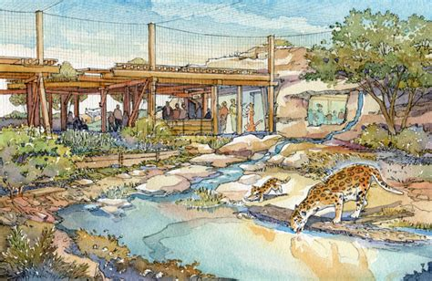 zoo design architects conquer  master plan madness wdm architects