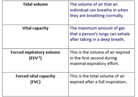 as biology king alfred s academy gas exchange as biology king alfred s academy lung function info for