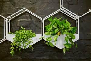 wall planter wabe wall planter oblica melbourne modern designer