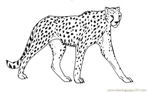 coloring page cheetah coloring pages cheetah animals gt cheetah free