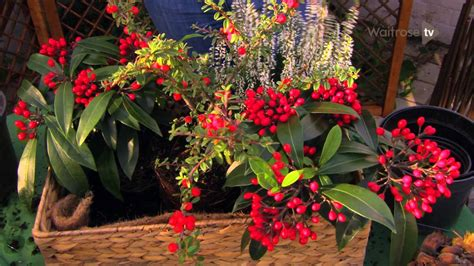 make a christmas table decoration waitrose garden