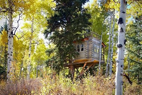 Treehouse Cabins Branson Mo by Cozy Colorado Treehouse Home Design Garden