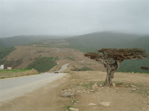 salalah anti gravity point  magical place  car