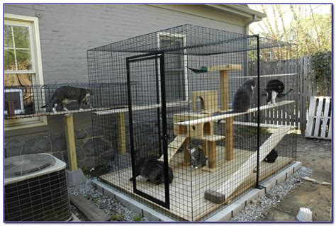cat patio cat patio enclosures patios home design ideas kv7avxvjbm