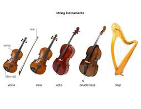 the string section orchestral instruments the string section thinglink