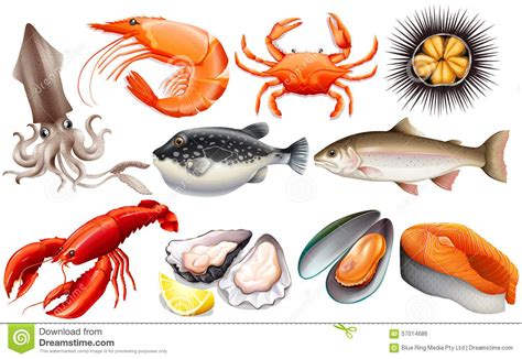 Seafood Images Clip seafood clip cliparts