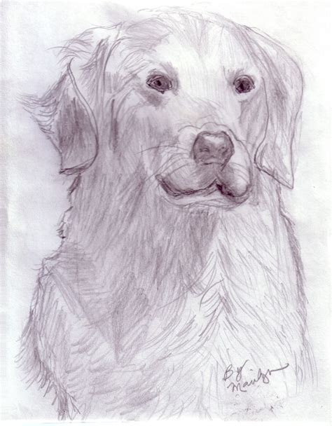 puppy sketches collection of free wallpapers pencil drawing painting sketches of