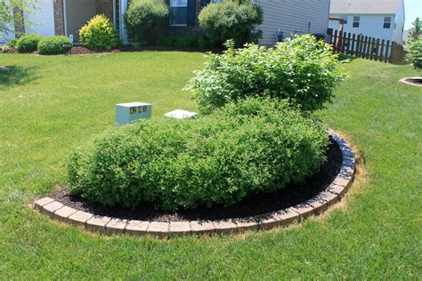 Landscape Ideas To Hide Utility Boxes 1000 Images About Hiding Utility Boxes In Yard On