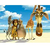 Madagascar  Photo 793145 Fanpop