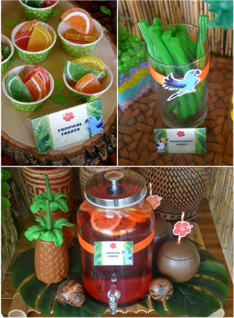 how does brazil decorate for 2 inspired birthday ideas