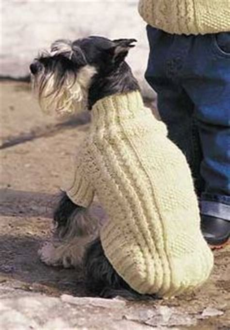 pug coat knitting pattern knitting for guys on baby sweaters free knitting and ravelry