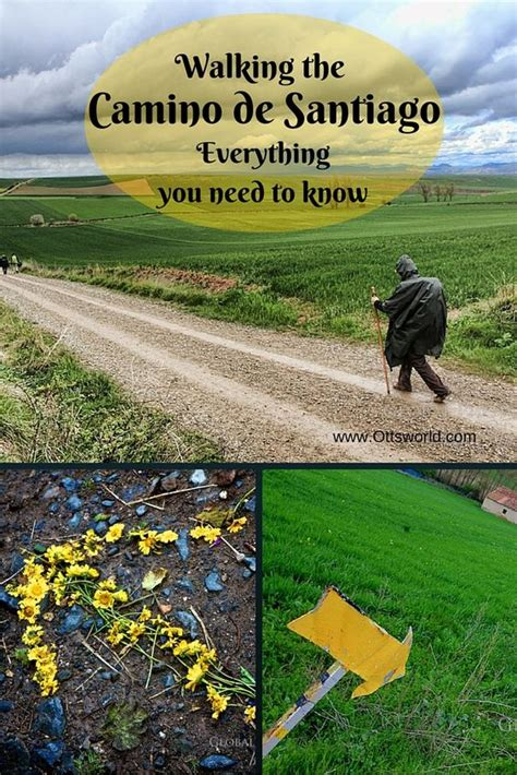 camino walk all of your basic questions about walking the camino de