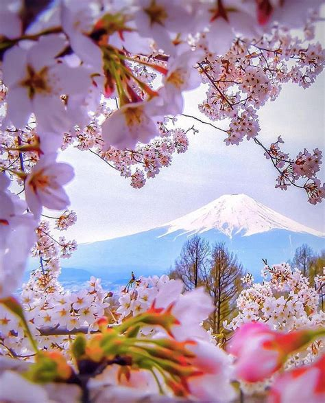 imagenes monte fuji japon wowww