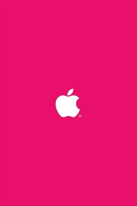 wallpaper apple rose 627 best images about apples in pink and red on pinterest