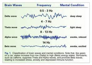 Alpha brain review a full analysis