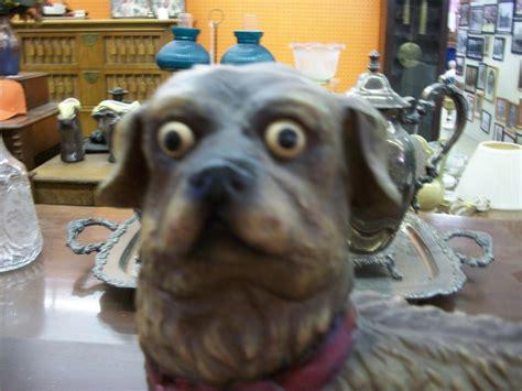 creepy dogs creepy