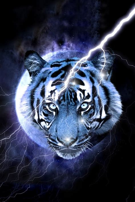 Blue Tiger blue tiger wallpaper backgrounds for smartphones