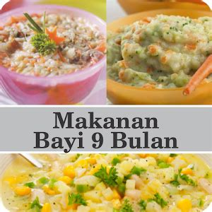 Setelan Bayi 6 10 Bulan 3622bb makanan bayi 9 bulan for pc
