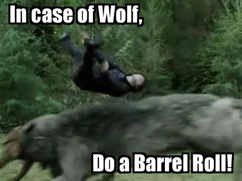 Barrels Meme - image 197099 do a barrel roll know your meme